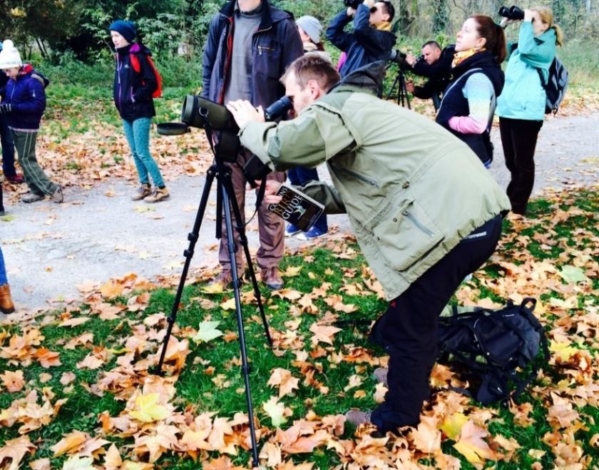 birdwatching-Slovensko-vylety-s-detmi